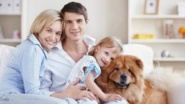 Wills & Trusts dog-young-family Direct Wills Custom House
